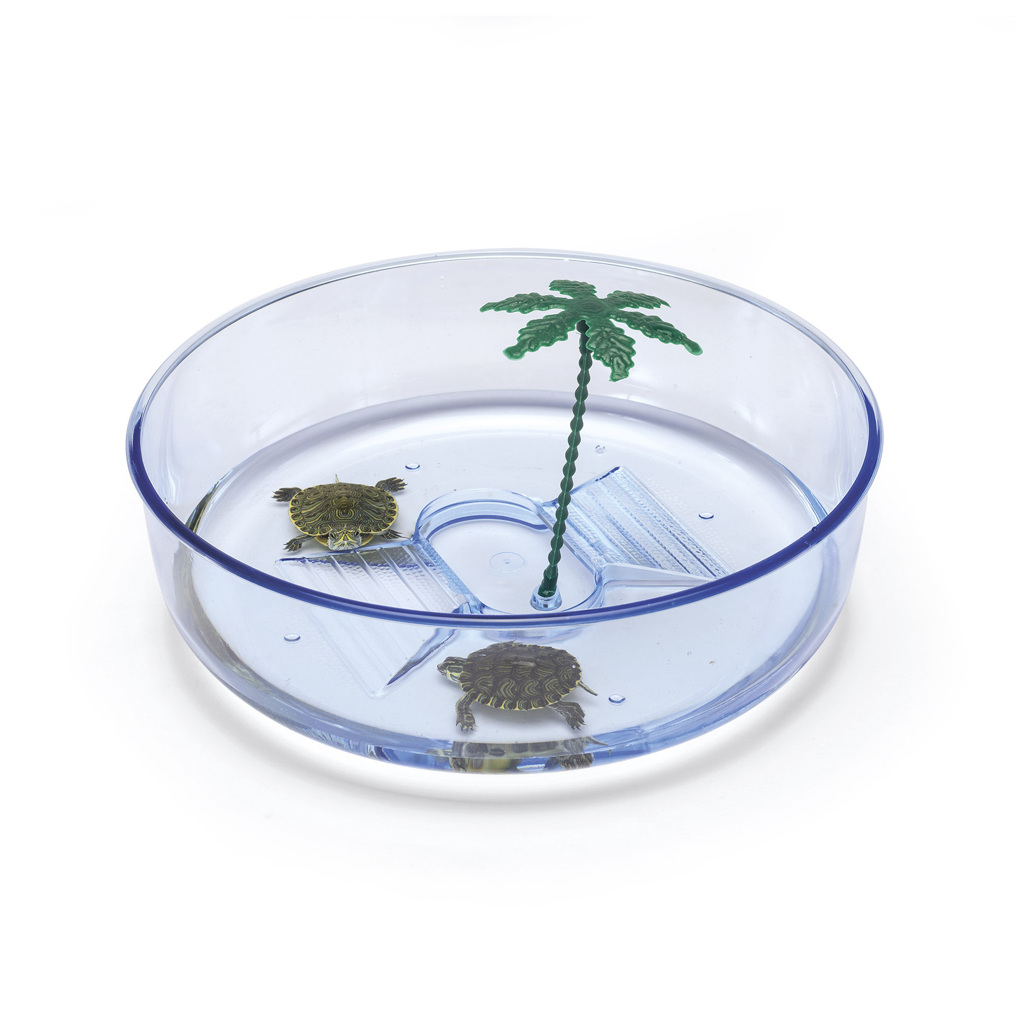 Prodotti per tartarughe turtle hydra for Tartarughe vaschetta